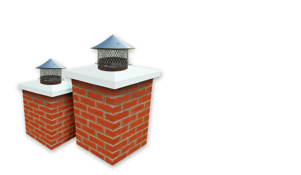 Is your chimney subject to animal invasions?